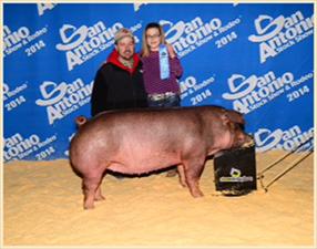 Olson Farms | Winners